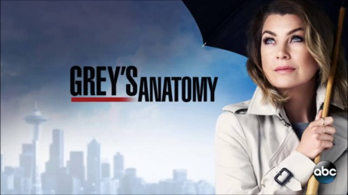 Grey's Anatomy season 13 broadcast