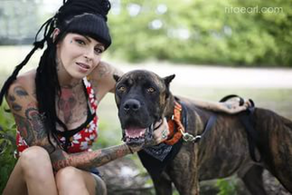 pit bulls and parolees is officially renewed for season 9