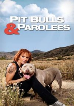 Pit Bulls and Parolees is officially renewed for season 9 to air in 2017