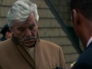 Dennis Farina in Law & Order (1990)